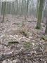 2007-02-24-cimg2885-klein