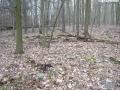 2007-02-24-cimg2886-klein
