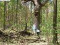 2007-04-22-cimg3490-klein