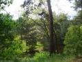 2006-06-04-cimg8430-klein