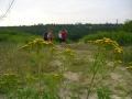 2007-07-13-freitag-cimg3928-klein