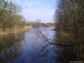 2006-04-17-cimg7435-klein