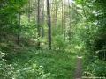 2006-06-25-cimg9152-klein