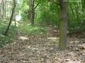 2006-06-25-cimg9167-klein