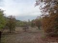 2012-11-04-torfgraben-030-klein