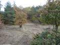 2012-11-04-torfgraben-033-klein