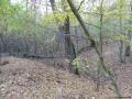 2012-11-04-torfgraben-036-klein