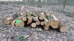 2014-03-24-kiesgrube-postfenn-097