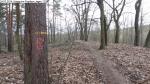 2014-03-24-kiesgrube-postfenn-065