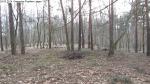 2014-03-24-kiesgrube-postfenn-067