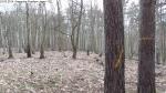 2014-03-24-kiesgrube-postfenn-069