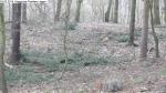 2014-03-24-kiesgrube-postfenn-070