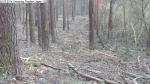 2014-03-24-kiesgrube-postfenn-080