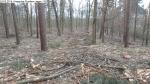 2014-03-24-kiesgrube-postfenn-081