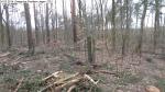 2014-03-24-kiesgrube-postfenn-084