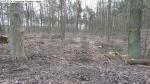 2014-03-24-kiesgrube-postfenn-094