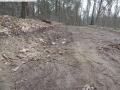 2014-03-18-langes-luch-baumfaellungen-027