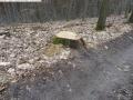 2014-03-18-langes-luch-baumfaellungen-030