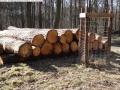 2014-03-20-pichelsberge-ampostfenn-097
