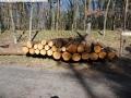 2014-03-20-pichelsberge-ampostfenn-132