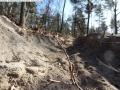 2014-03-20-pichelsberge-ampostfenn-004