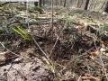 2014-03-20-pichelsberge-ampostfenn-024