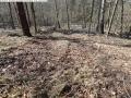 2014-03-20-pichelsberge-ampostfenn-031