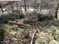 2014-03-20-pichelsberge-ampostfenn-044