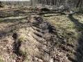 2014-03-20-pichelsberge-ampostfenn-057