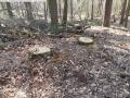 2014-03-20-pichelsberge-ampostfenn-061