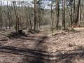 2014-03-20-pichelsberge-ampostfenn-063