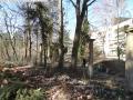 2014-03-20-pichelsberge-ampostfenn-156