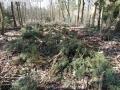 2014-03-20-pichelsberge-ampostfenn-157