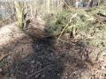 2014-03-20-pichelsberge-ampostfenn-172