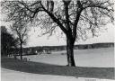 1923-wannseeufer-mit-seglerhaus-klein