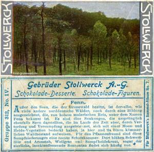 1904 Stollwerck Album 7 Serie 312 Nr. 4 - Grunewald - Fenn - klein