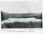 1906 Schlachtensee - 1907 Der Grunewald bei Berlin Dahl klein