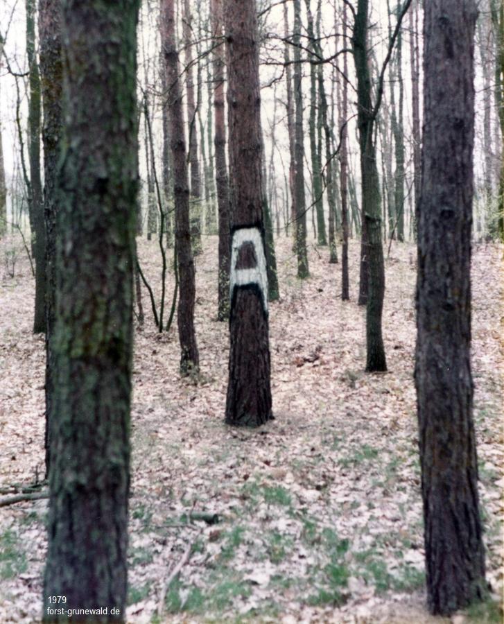 1979 Grunewald Militärzeichen Nähe Kiesgrube Teufelssee a klein